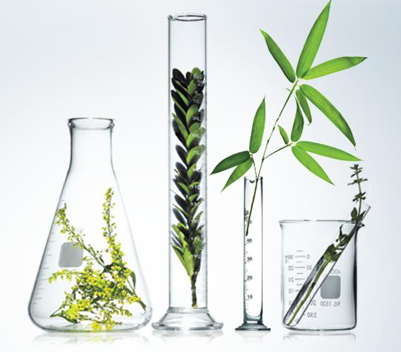 WHY NATURAL PRODUCTS | AloeMoist Organics